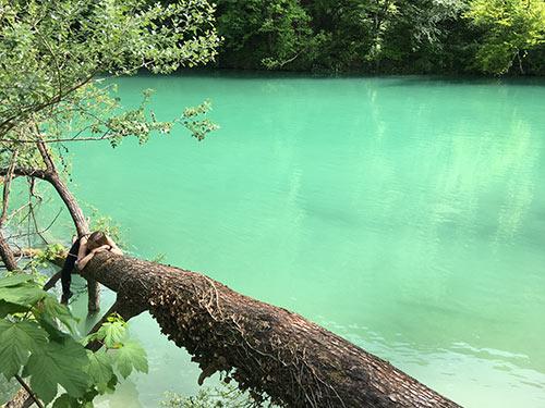 smaragdno zelena reka soča