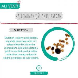 antioksidant glutation